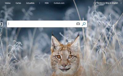 Bing : Le moteur de recherche travaille à améliorer ses résultats